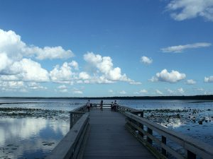Photo of paines prairie pier
